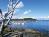 Margaret Todd in Bar Harbor